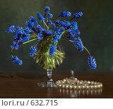Купить «Весенний натюрморт», фото № 632715, снято 17 мая 2008 г. (c) Кравченко Юлия / Фотобанк Лори