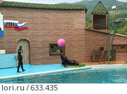 Купить «Утришский дельфинарий. Выступление морского льва», фото № 633435, снято 1 августа 2008 г. (c) Татьяна Нафикова / Фотобанк Лори