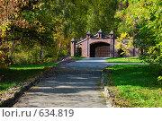 Замок в лесу. Кованные въездные ворота украшенные башнями. Стоковое фото, фотограф Юрий Бульший / Фотобанк Лори