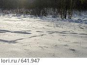 Купить «Зимний пейзаж», фото № 641947, снято 2 января 2009 г. (c) Денис Шароватов / Фотобанк Лори