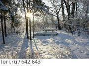 Купить «Усадьба», фото № 642643, снято 24 января 2008 г. (c) Константин Порядин / Фотобанк Лори