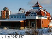 Купить «Дом у парка отдыха», фото № 643287, снято 2 января 2009 г. (c) Татьяна Лепилова / Фотобанк Лори