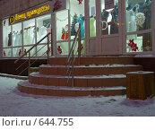 Купить «Серпухов. Новогодняя витрина.», фото № 644755, снято 27 декабря 2008 г. (c) Коротнев Виктор Георгиевич / Фотобанк Лори