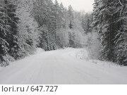 Купить «Зимняя дорога», эксклюзивное фото № 647727, снято 4 января 2009 г. (c) Наталия Шевченко / Фотобанк Лори