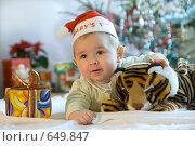 Купить «Встречаем Год Тигра», фото № 649847, снято 10 января 2009 г. (c) Юлия Кузнецова / Фотобанк Лори