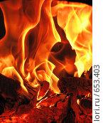 Пламенная страсть. Стоковое фото, фотограф Чировова Екатерина Владиславовна / Фотобанк Лори