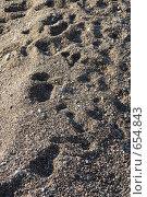 Песчаный берег. Стоковое фото, фотограф Лена Осадчая / Фотобанк Лори