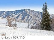 Вершина горы. Алтай. Стоковое фото, фотограф djandre77 / Фотобанк Лори