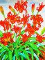 Оранжевые лилии, акварель, иллюстрация № 657631 (c) ИВА Афонская / Фотобанк Лори