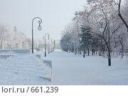 Купить «Площадь Ленина», фото № 661239, снято 15 января 2009 г. (c) Кирилл Федорин / Фотобанк Лори