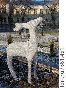 Купить «Олень», фото № 661451, снято 21 декабря 2008 г. (c) Кирилл Федорин / Фотобанк Лори