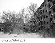 Купить «Заброшенные жилые дома. Абай. Казахстан», фото № 664239, снято 16 января 2009 г. (c) Вера Тропынина / Фотобанк Лори