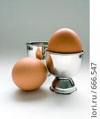 Купить «Куриное яйцо в подставке.Подставка для яйца.Куриное яйцо.», фото № 666547, снято 21 января 2009 г. (c) Кирпинев Валерий / Фотобанк Лори