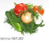 Овощной набор. Стоковое фото, фотограф Azaria Iounaev / Фотобанк Лори