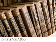 Книги. Достоевский (2009 год). Редакционное фото, фотограф Андрей Сверкунов / Фотобанк Лори