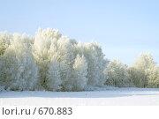 Купить «Зимний пейзаж», фото № 670883, снято 10 января 2008 г. (c) Михаил Ушаков / Фотобанк Лори