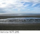 Купить «Белое море. Ягры», фото № 677295, снято 8 августа 2008 г. (c) Vladimir Semushin / Фотобанк Лори