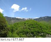 Купить «В долине Бзыби», фото № 677667, снято 20 апреля 2008 г. (c) Vladimir Semushin / Фотобанк Лори