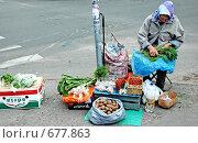 Купить «Экологически чистые продукты», фото № 677863, снято 30 июня 2008 г. (c) Tuuli Hakulinen / Фотобанк Лори