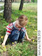 Мальчик, собирающий цветы. Стоковое фото, фотограф Елена Иценко / Фотобанк Лори