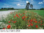 Купить «Летний пейзаж с маками», фото № 681059, снято 1 июля 2007 г. (c) Игорь Соколов / Фотобанк Лори