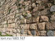 Фактура древнего камня и немного зелени. Стена старой крепости. Стоковое фото, фотограф Дживита / Фотобанк Лори
