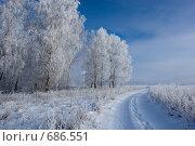 Купить «Грунтовая дорога в зимний день», фото № 686551, снято 5 января 2009 г. (c) Василий Вишневский / Фотобанк Лори