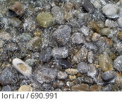 Морская галька. Стоковое фото, фотограф Олег Колташев / Фотобанк Лори