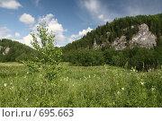 Купить «Уральский пейзаж, рядом с рекой Вишера», фото № 695663, снято 12 июля 2008 г. (c) Максим Стриганов / Фотобанк Лори
