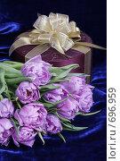 Купить «Подарок. Сиреневые тюльпаны, бордовая коробка с золотой лентой на темно-синем фоне», фото № 696959, снято 9 февраля 2009 г. (c) Ирина Карлова / Фотобанк Лори