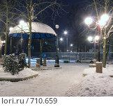Купить «Снежная сказка на ночной аллее в городе», фото № 710659, снято 18 февраля 2009 г. (c) Андрей Рыбачук / Фотобанк Лори