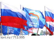 Купить «Российский государственный флаг», фото № 713995, снято 15 февраля 2009 г. (c) Дима Рогожин / Фотобанк Лори