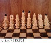 Шахматные фигуры. Стоковое фото, фотограф Егоров Алексей / Фотобанк Лори