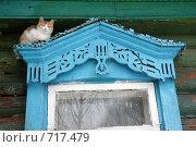 Купить «Кошка сидит на окошке старого деревенского дома», эксклюзивное фото № 717479, снято 16 февраля 2009 г. (c) Яна Королёва / Фотобанк Лори