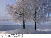 Зимнее утро. Стоковое фото, фотограф Юрков Виктор Петрович / Фотобанк Лори