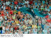 Купить «Полёт дельфинов», фото № 720735, снято 27 июля 2008 г. (c) Игорь Бунцевич / Фотобанк Лори