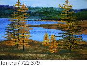 Купить «Осень на севере и желтые лиственницы», иллюстрация № 722379 (c) Олеся Ефименко / Фотобанк Лори