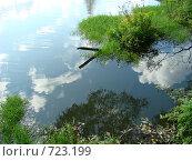 Отражение в воде. Стоковое фото, фотограф Юлия Анатольевна / Фотобанк Лори