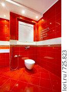 Купить «Стильный туалет», фото № 725823, снято 20 января 2009 г. (c) Raev Denis / Фотобанк Лори