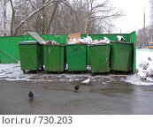 Купить «Мусорные контейнеры на Алтайской улице, район Гольяново, Москва», эксклюзивное фото № 730203, снято 26 февраля 2009 г. (c) lana1501 / Фотобанк Лори