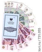 Купить «Сберегательная книжка и деньги», фото № 731055, снято 3 марта 2009 г. (c) Маргарита Лир / Фотобанк Лори