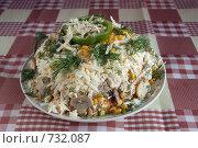Купить «Аппетитный салат», фото № 732087, снято 20 февраля 2009 г. (c) Яков Филимонов / Фотобанк Лори