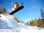 Купить «Сноубордист прыгает с горы», фото № 733923, снято 20 февраля 2009 г. (c) Александр Тимофеев / Фотобанк Лори