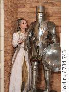 Купить «Девушка в рыцарском замке», фото № 734743, снято 8 февраля 2009 г. (c) Евгений Батраков / Фотобанк Лори