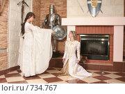 Купить «Девушки в рыцарском замке», фото № 734767, снято 8 февраля 2009 г. (c) Евгений Батраков / Фотобанк Лори