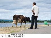 Купить «Что год коровы нам готовит?», фото № 736235, снято 3 августа 2008 г. (c) Игорь Момот / Фотобанк Лори