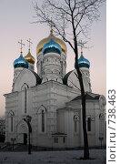 Купить «Церковь на закате», фото № 738463, снято 1 февраля 2008 г. (c) Леонид Селивёрстов / Фотобанк Лори