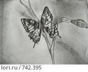 Серое живое. Редакционная иллюстрация, иллюстратор Соколова Анастасия / Фотобанк Лори