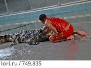Купить «Крокодиловая ферма. Крокодиловое шоу. Таиланд. Паттайа», фото № 749835, снято 9 октября 2007 г. (c) Ирина Доронина / Фотобанк Лори