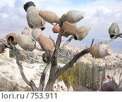 Другая Турция. Каппадокия (2005 год). Стоковое фото, фотограф Луканцев Иван Сергеевич / Фотобанк Лори